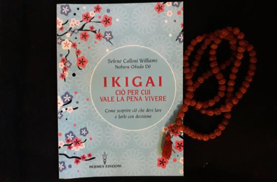 """""""Ikigai - Ciò per cui vale la pena vivere"""". Come scoprire ciò che devi fare e farlo con decisione."""